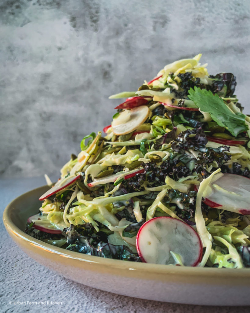 coleslaw with kale and radish