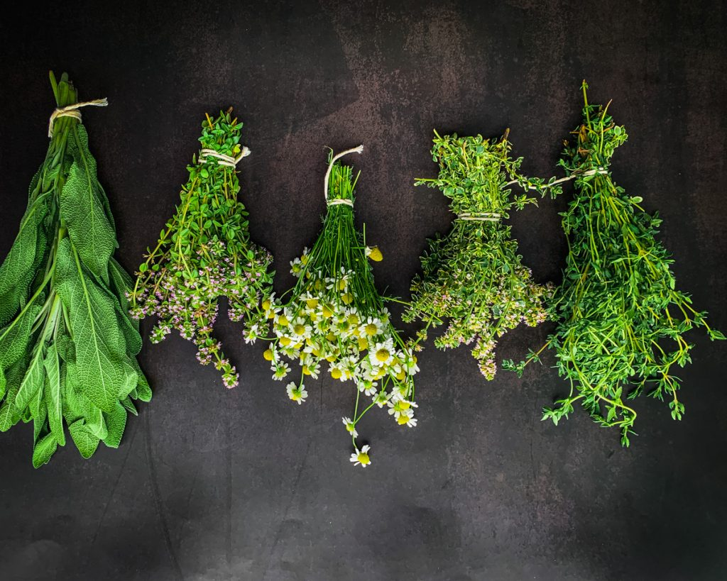 sage, thyme and chamomile in bundles.
